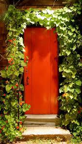 Orange Door 23