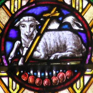 Sacrificial Lamb of Christ