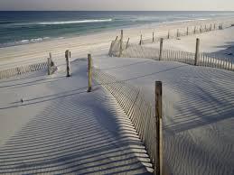 Snowy Jersey Beach