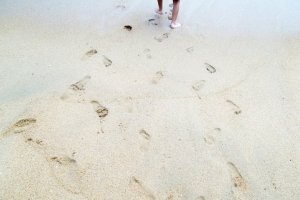 Elijahs Footprints in the Sand