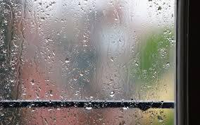 Rain on Sill